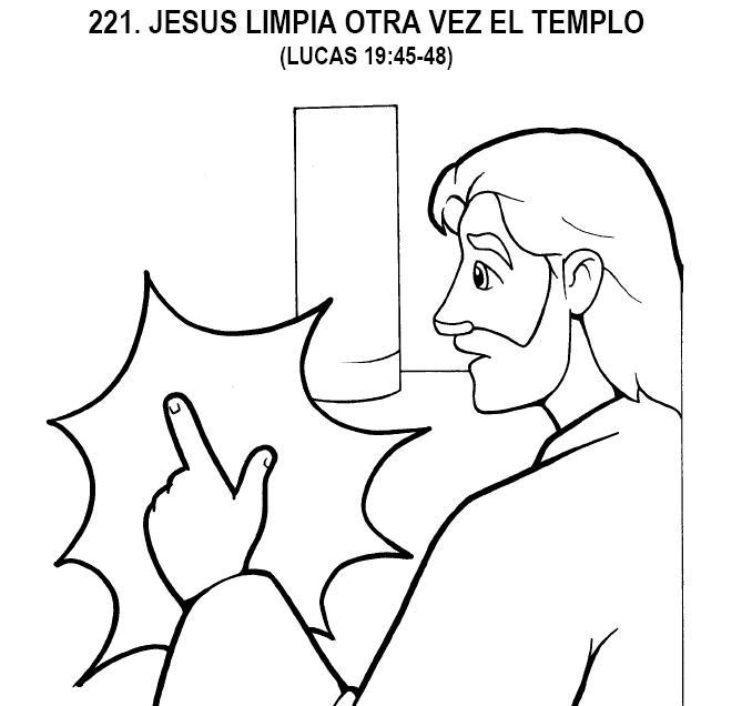 221.JPG