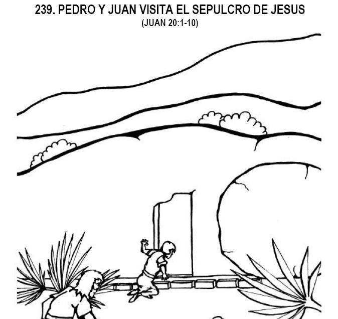 239.JPG
