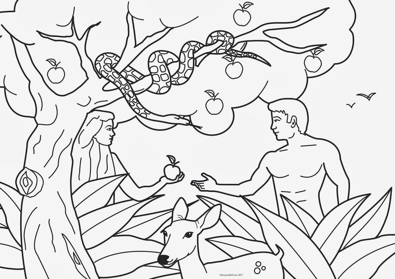 Dibujos_Para_Colorear_De_Adan_y_Eva12.jpg