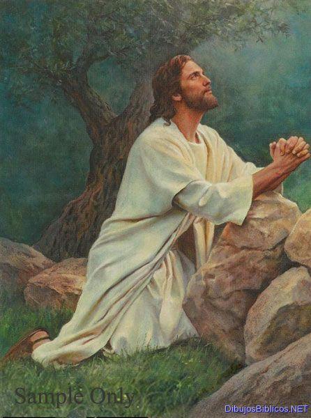 prayer-gesthemane.jpg