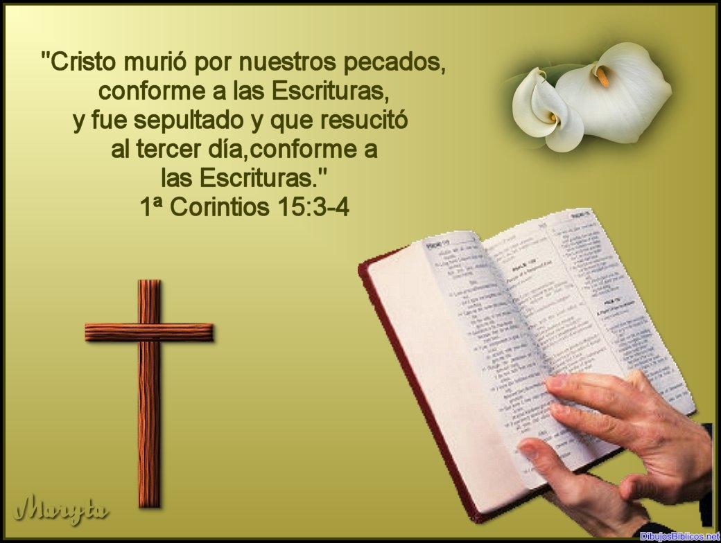 Conforme_a_las_Escrituras.jpg